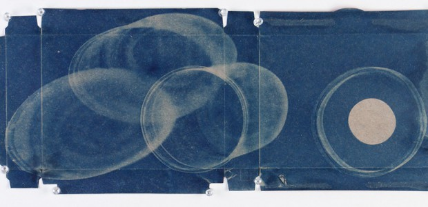 So Much Beauty... The Recycled Cyanotypes of Denis Roussel