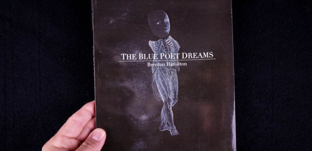 Photobook: Brenton Hamilton, The Blue Poet Dreams